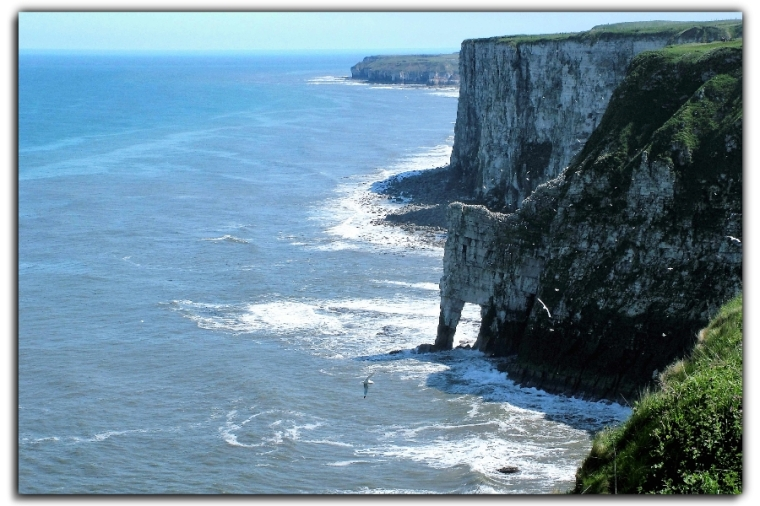bempton-cliffs