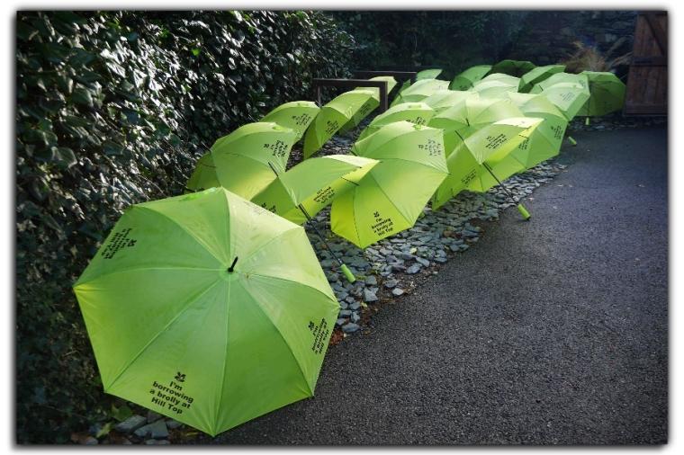 Umbrella front
